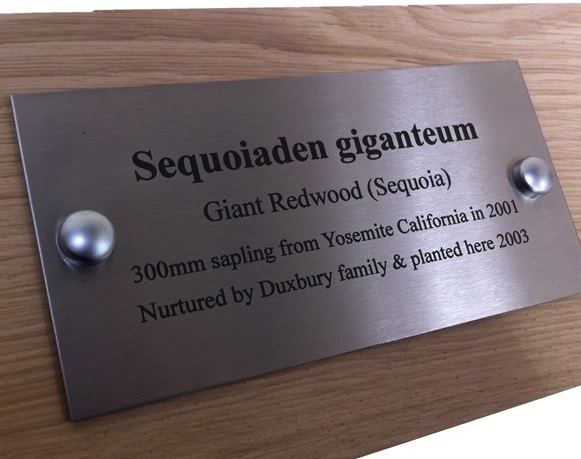 Engraved Bench Plaques